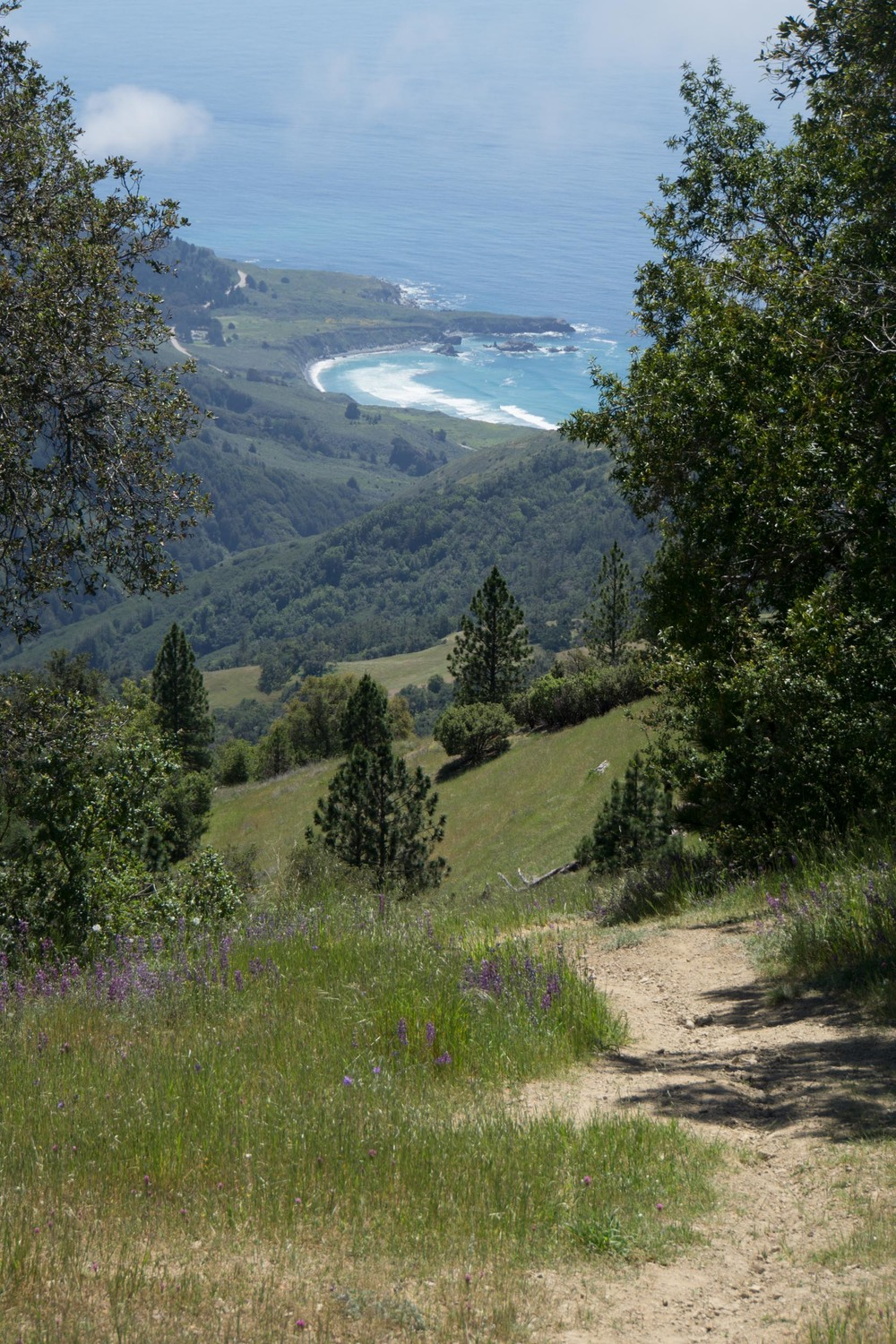 Looking down on Sand Dollar Beach.