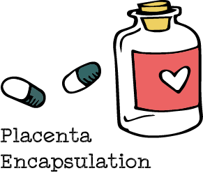 the birth geek placenta encapsulation