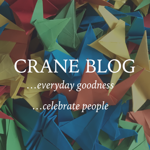 HUMAN   What if social media could make us better people? That's the idea that prompted Crane Blog. Sam folded one thousand origami cranes and spontaneously gives them to people who have done good things in everyday life. Each story is shared on Facebook and Instagram via Crane Blog, along with a photo of each crane.