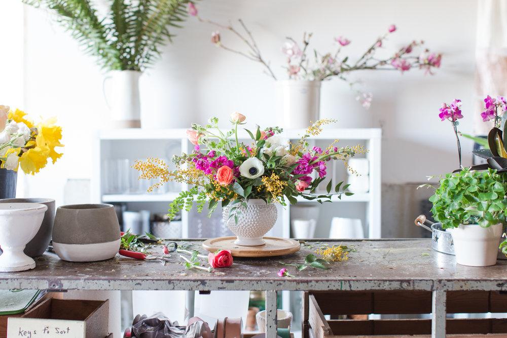 First&Bloom_Spring2018-7676.JPG