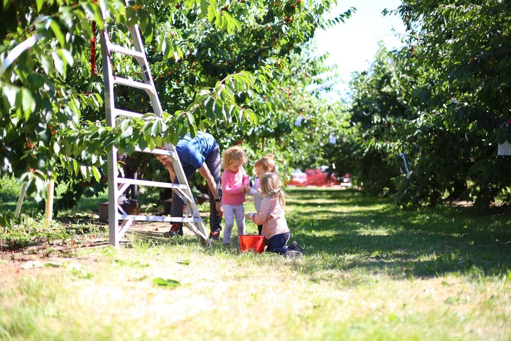 U-pick Farm-61.jpg