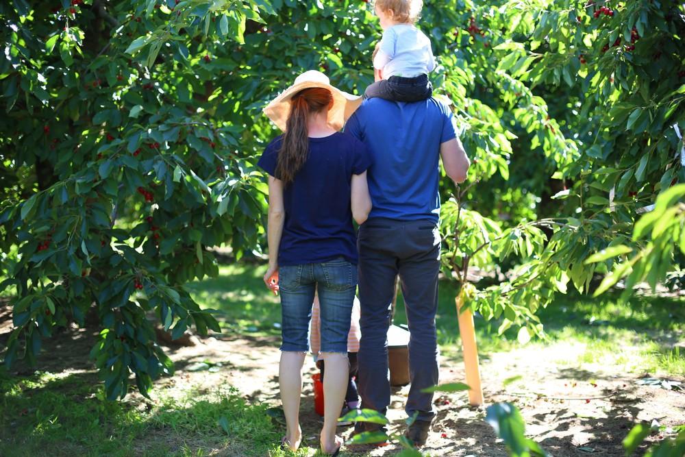U-pick Farm-196.jpg