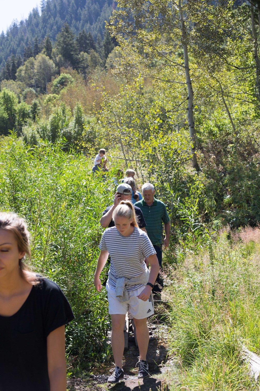 Stuart Falls Hike-14.jpg