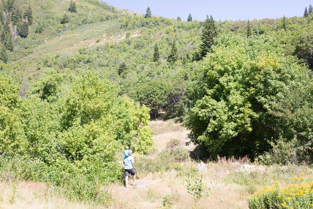 Stuart Falls Hike-40.jpg