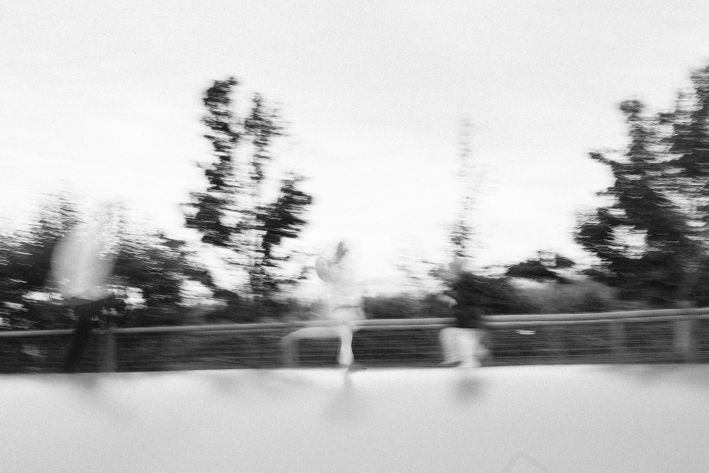 Swan's Trail-78.jpg