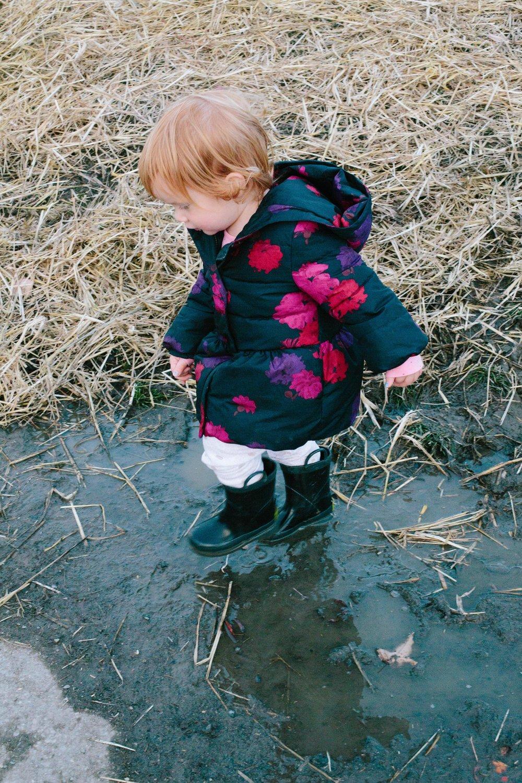Swan's Trail-142.jpg