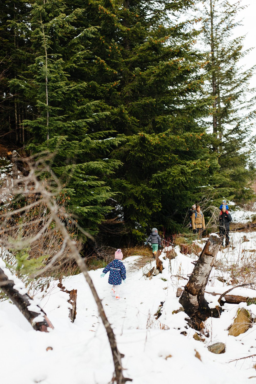 Christmas Tree Hunt-75.jpg