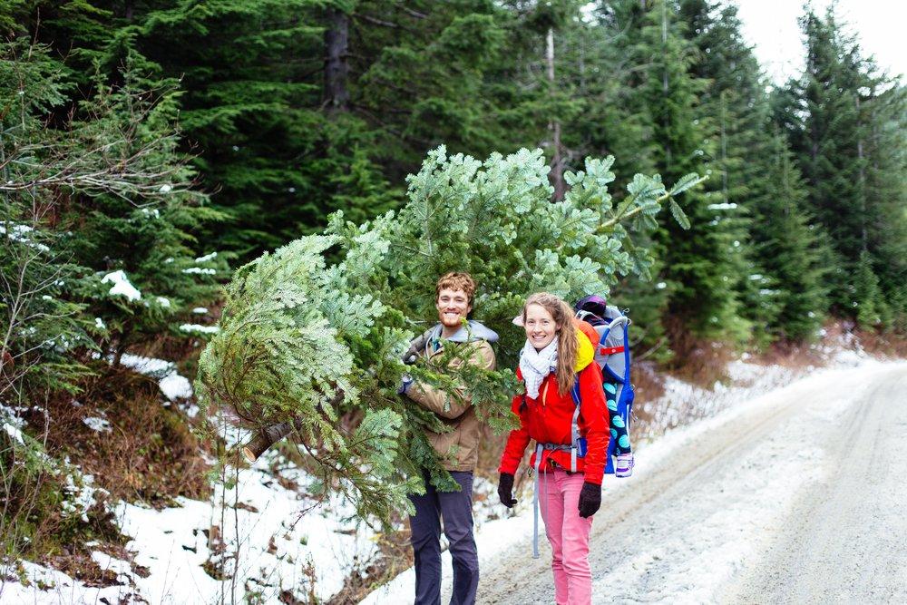 Christmas Tree Hunt-135.jpg