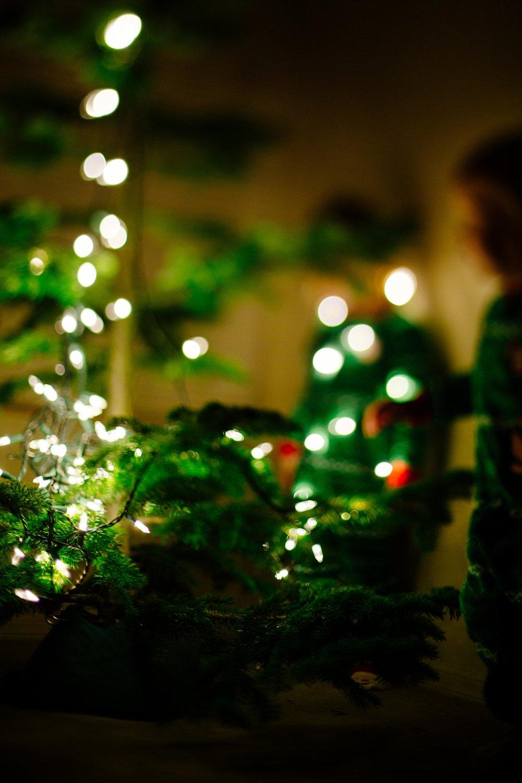 Christmas Tree-3.jpg