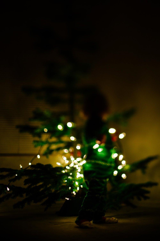 Christmas Tree-5.jpg