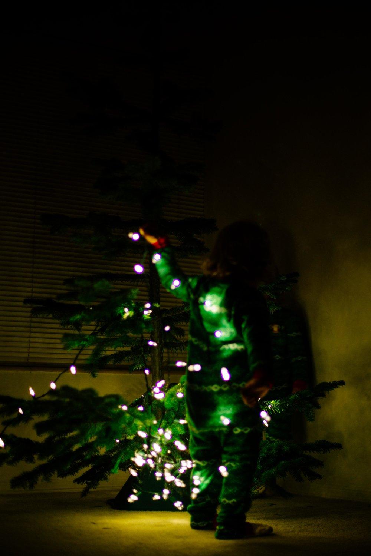 Christmas Tree-6.jpg