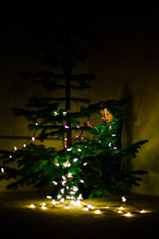 Christmas Tree-7.jpg