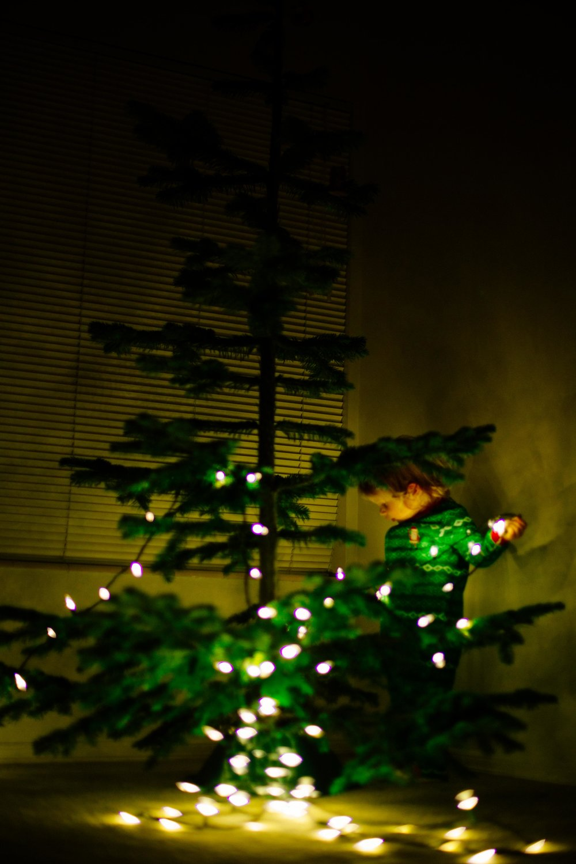 Christmas Tree-8.jpg
