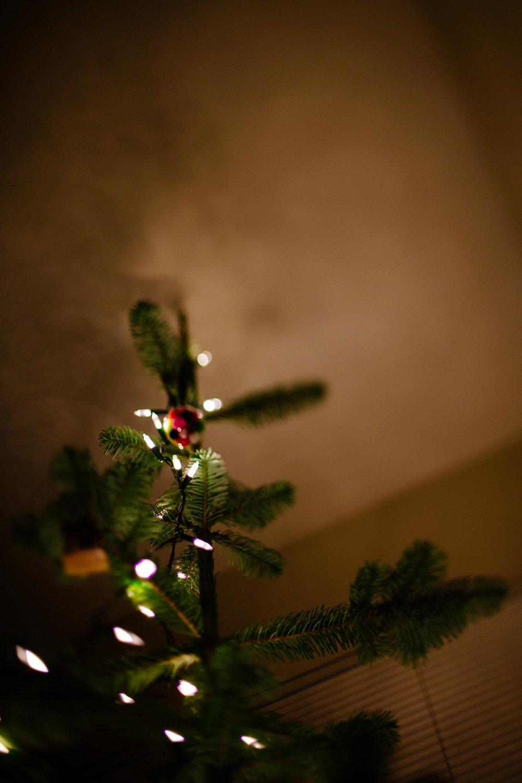 Christmas Tree-14.jpg