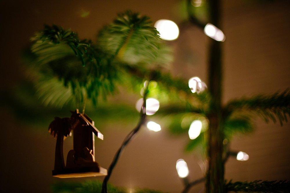 Christmas Tree-15.jpg
