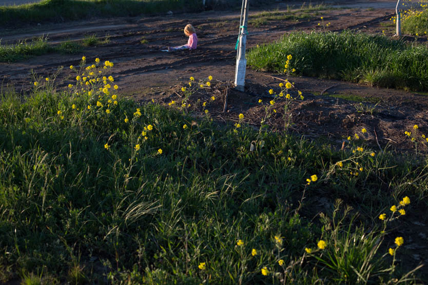Muddy Fields-14.jpg