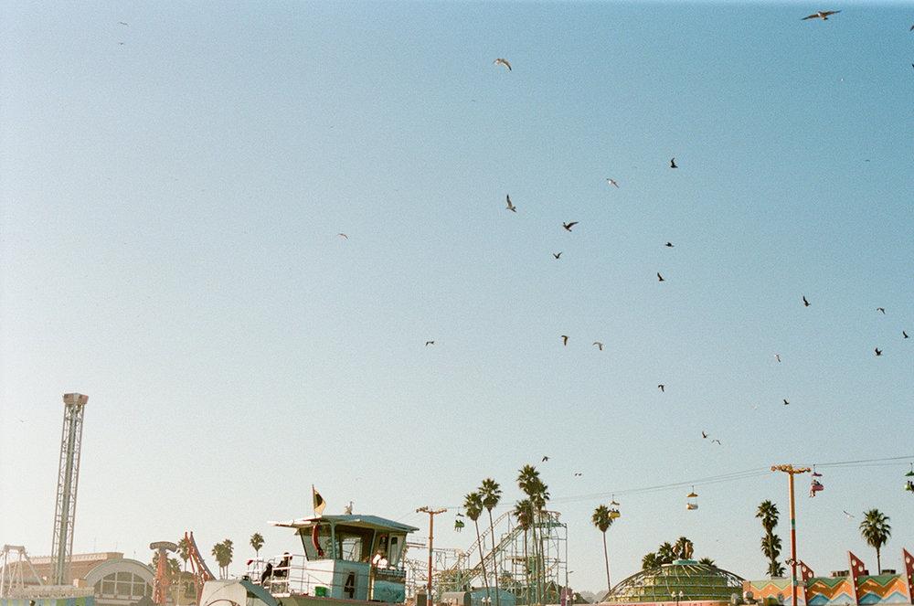 Santa Cruz _17-105.jpg