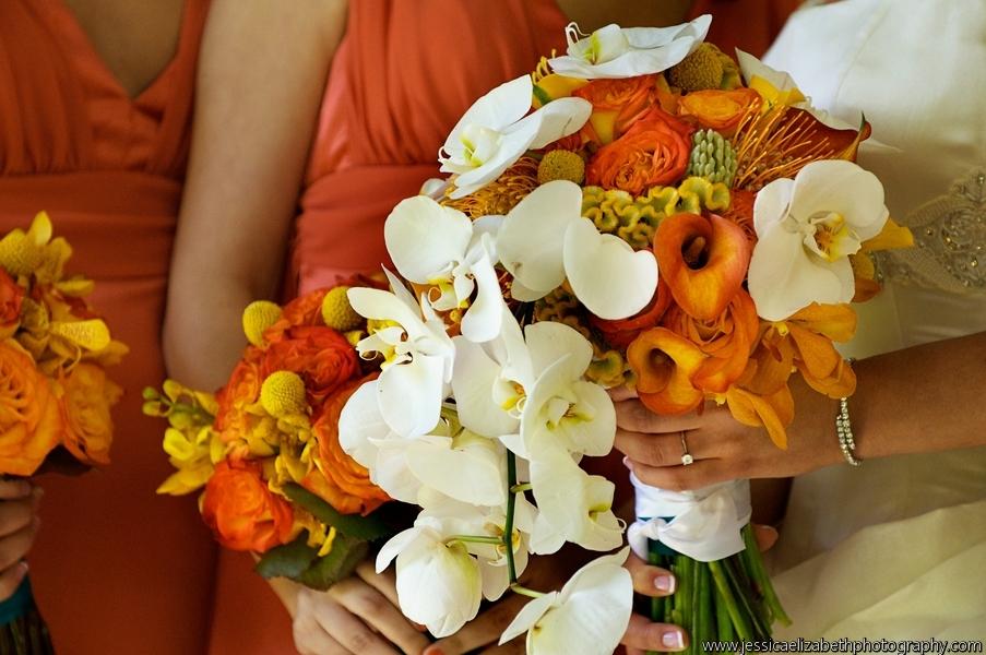 Tincopa_Konerman_www.jessicaelizabethphotography.com_MMK_14-56-05_DSC_0106 (1)_0_low.jpg