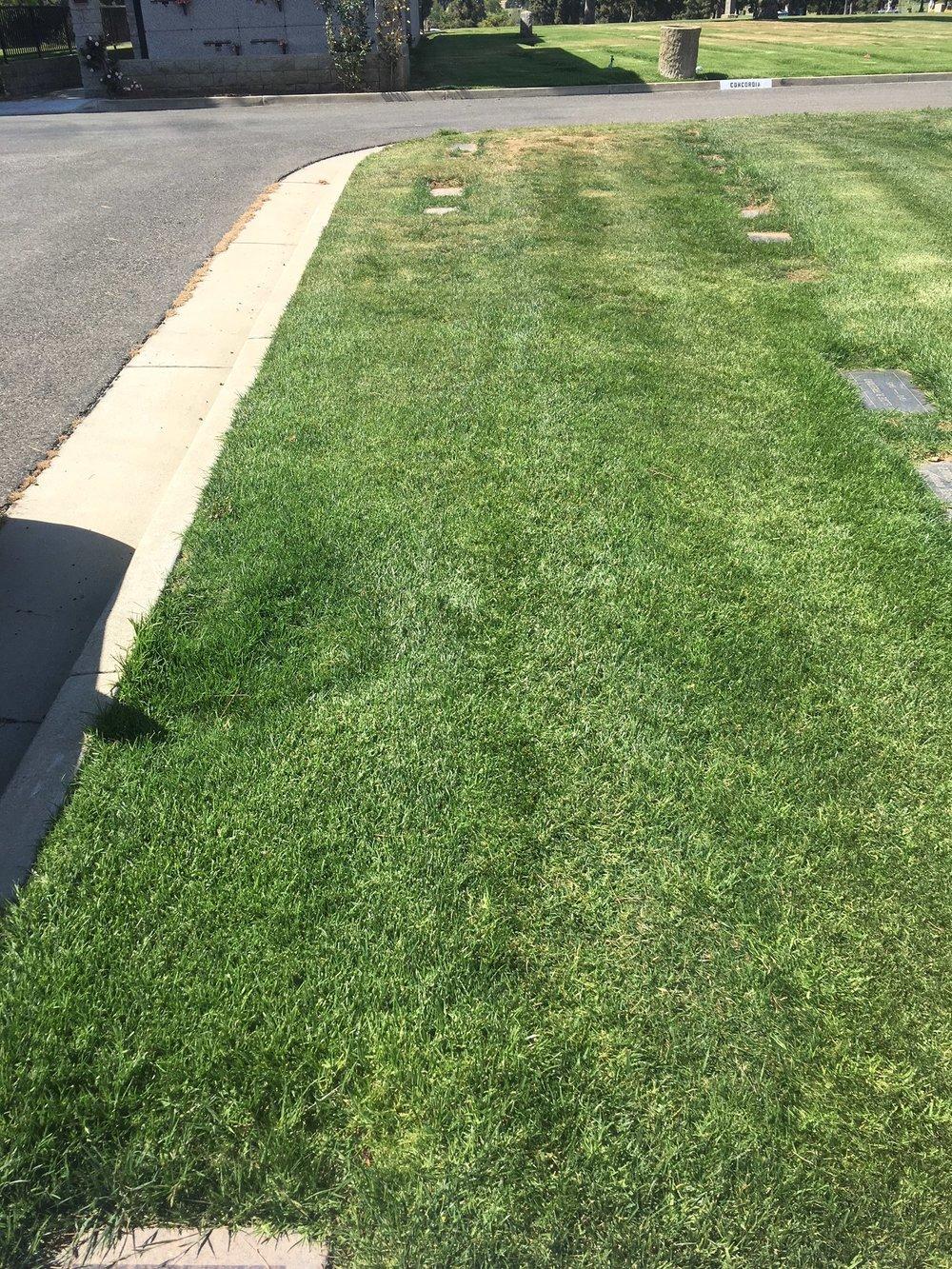 Joe Keaton is buried in, in this unmarked gravesite.