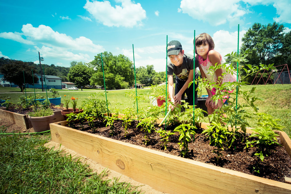 Community Garden at Dayspring Jellico