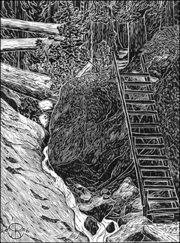 Steep Ravine Ladder