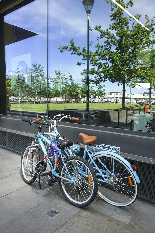 Vic Harbour bikes.jpg