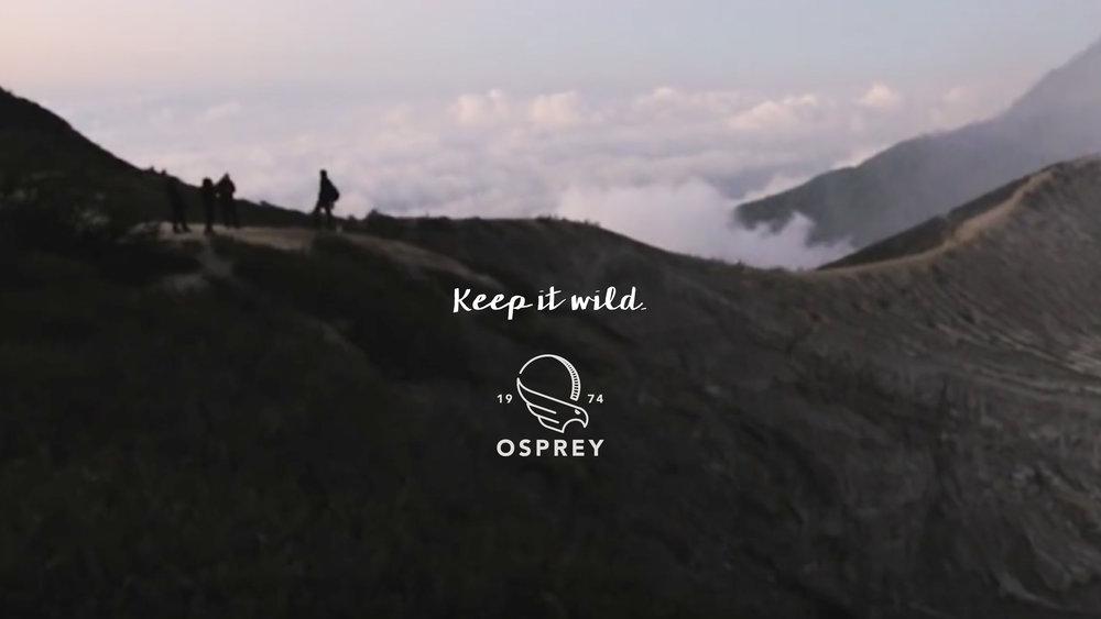 Osprey_TV_frames_final-18_2.jpg