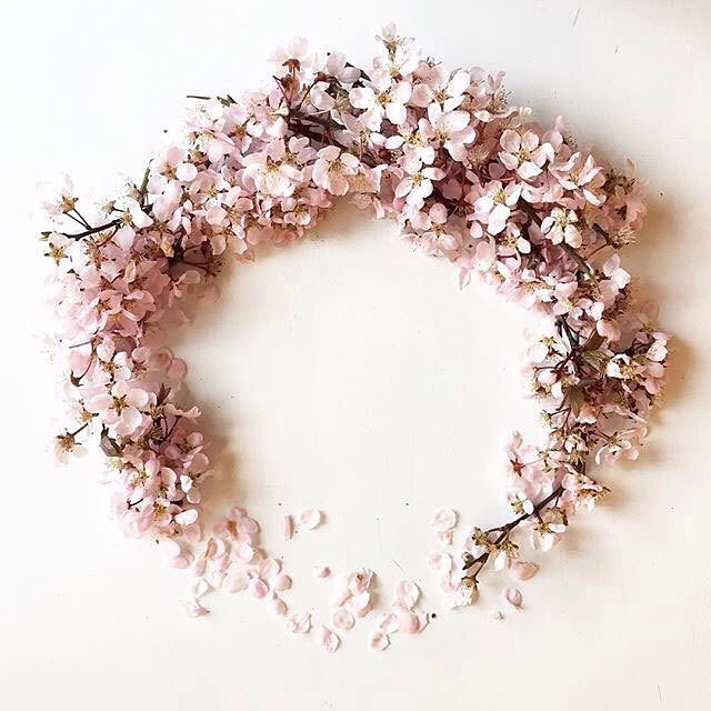 Pink PERFECTION - Rg: @flora.forager - #pink #petals #halo #crown #16.3 #dusty #weddinginspo
