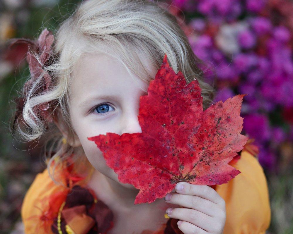 """Осенние каникулы  Приглашаем вас отправиться в невероятное приключение """"ХОЧУ ВСЕ ЗНАТЬ""""!   Отправиться"""