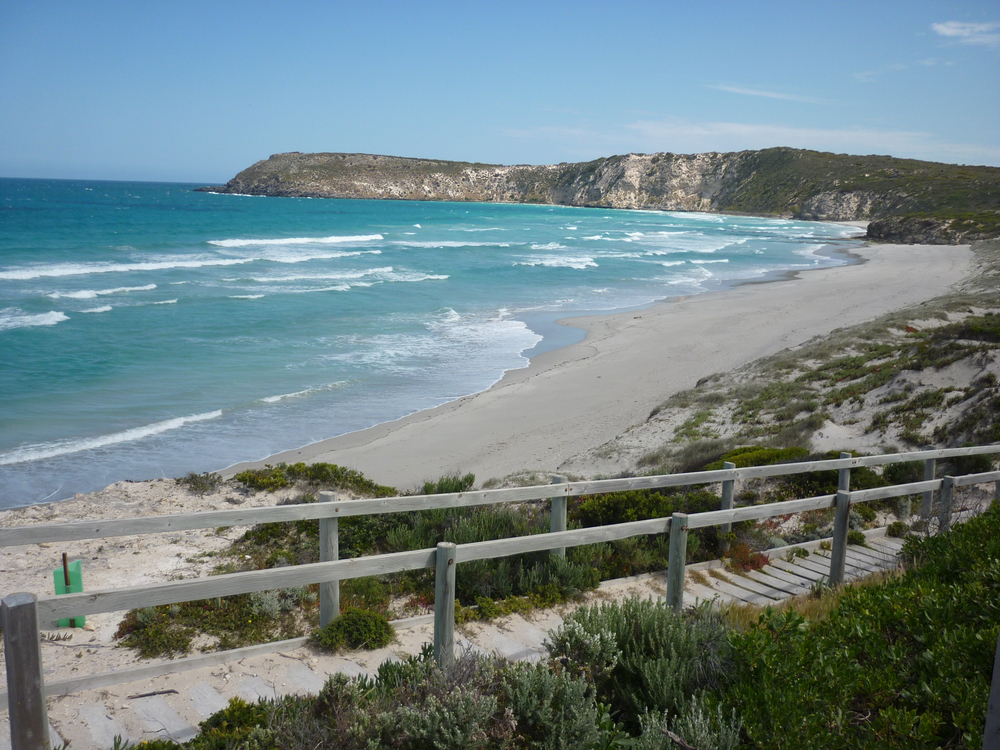 Pennington Bay -a great place for surfing, diving and fishing in this beautiful  spot