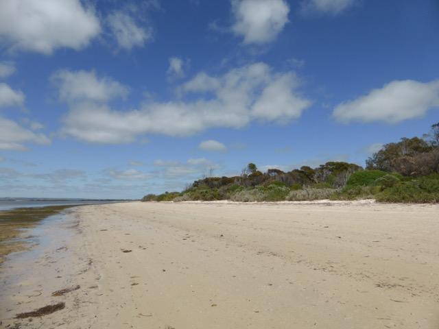 Best beach.jpg