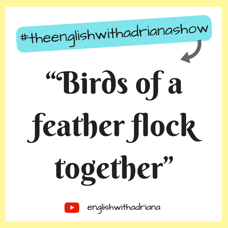 English Proverbs - Birds of a feather flock together