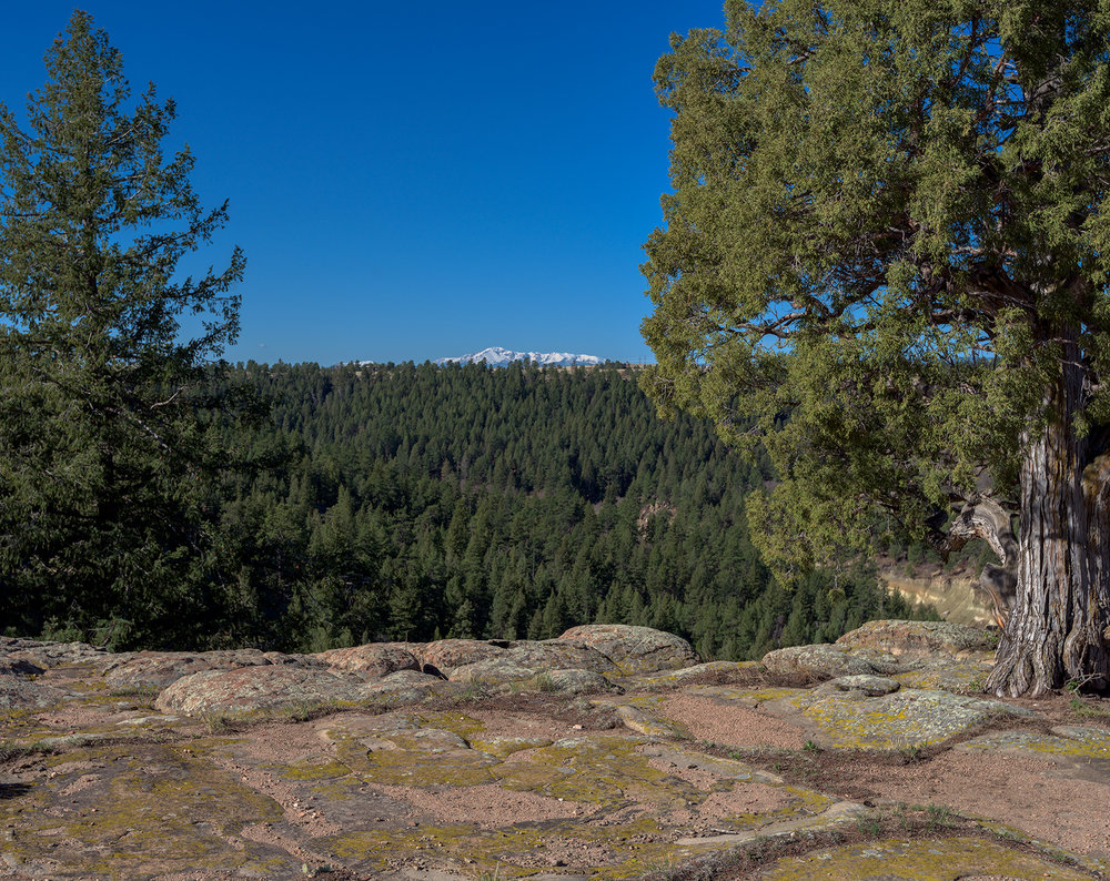 Snow-capped Pikes Peak from Rim Rock Trail