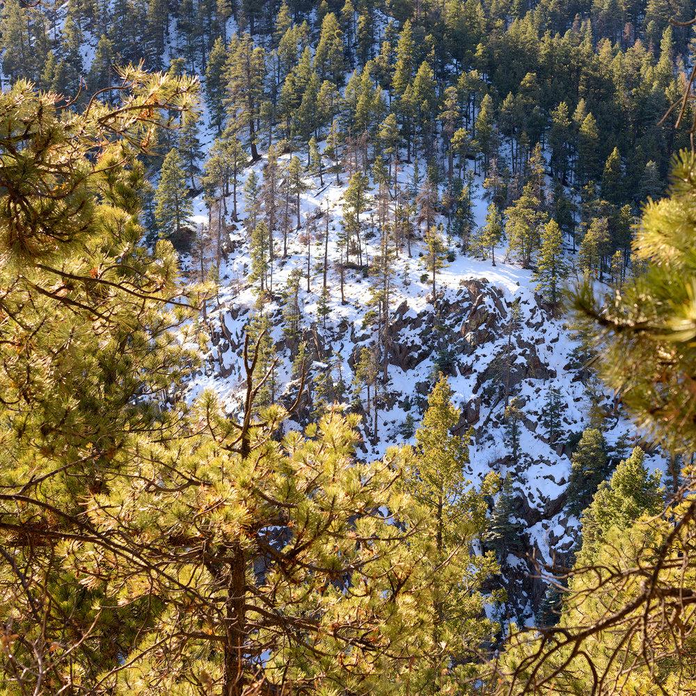 BTP_NCC_Upper_Columbine_Trail_3.jpg