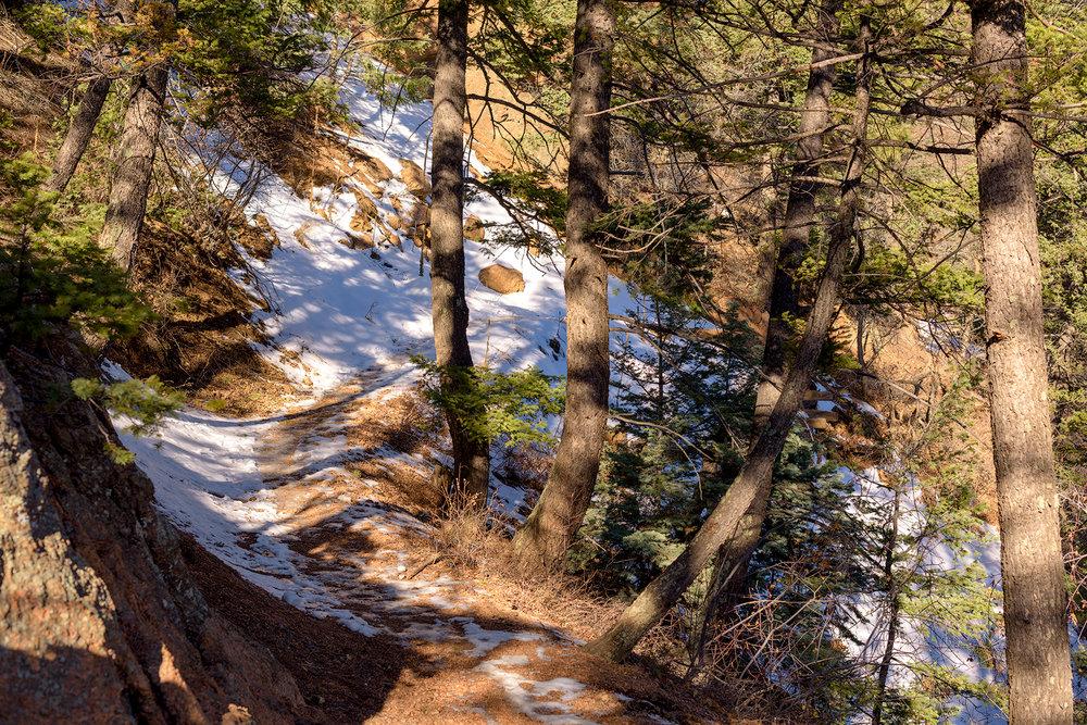 BTP_NCC_Upper_Columbine_Trail_8.jpg