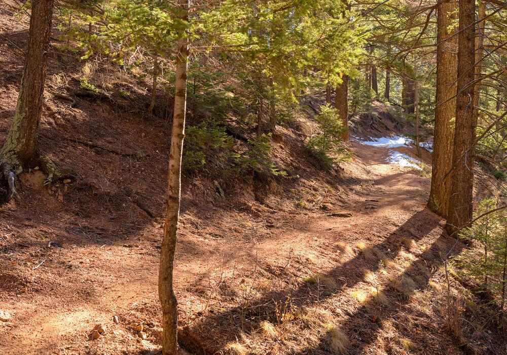 BTP_NCC_Upper_Columbine_Trail_9.jpg