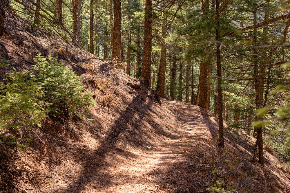 BTP_NCC_Upper_Columbine_Trail_12.jpg