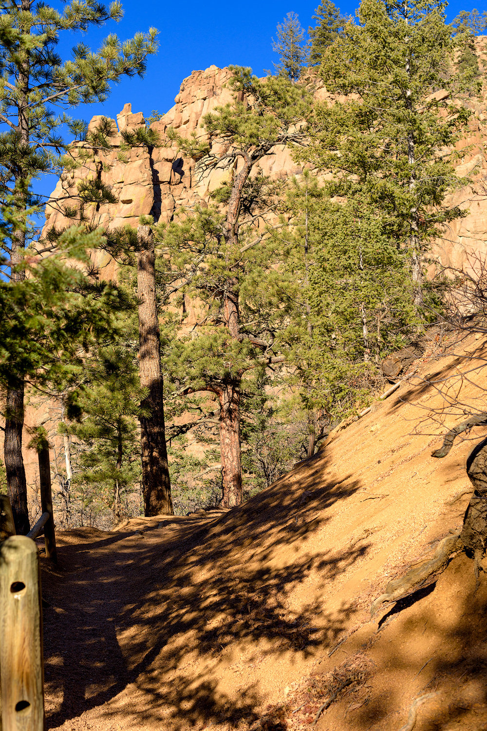 BTP_NCC_Middle_Columbine_Trail_1.jpg