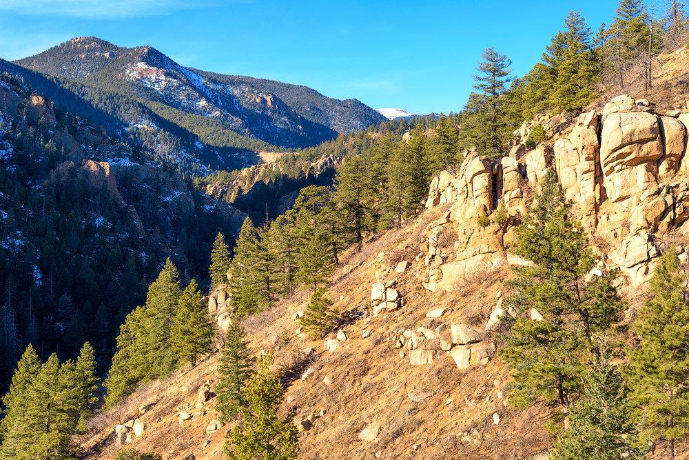 BTP_NCC_Middle_Columbine_Trail_6.jpg