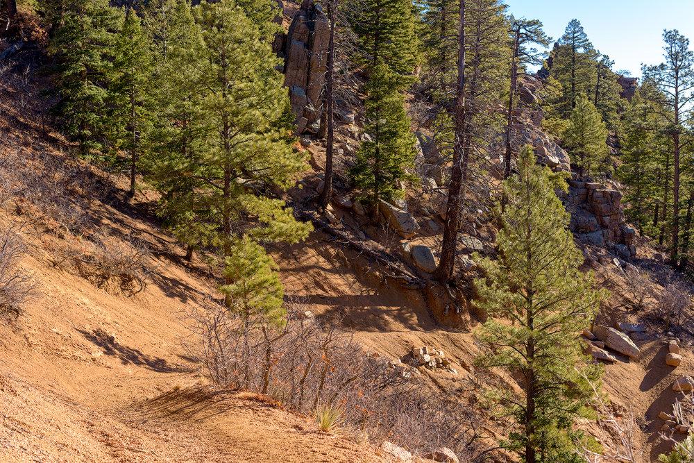 BTP_NCC_Middle_Columbine_Trail_7.jpg