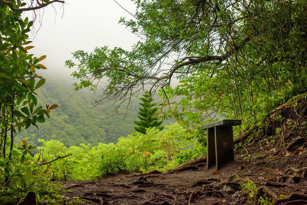 BTP_Kuliouou_Ridge_Trail-91.jpg