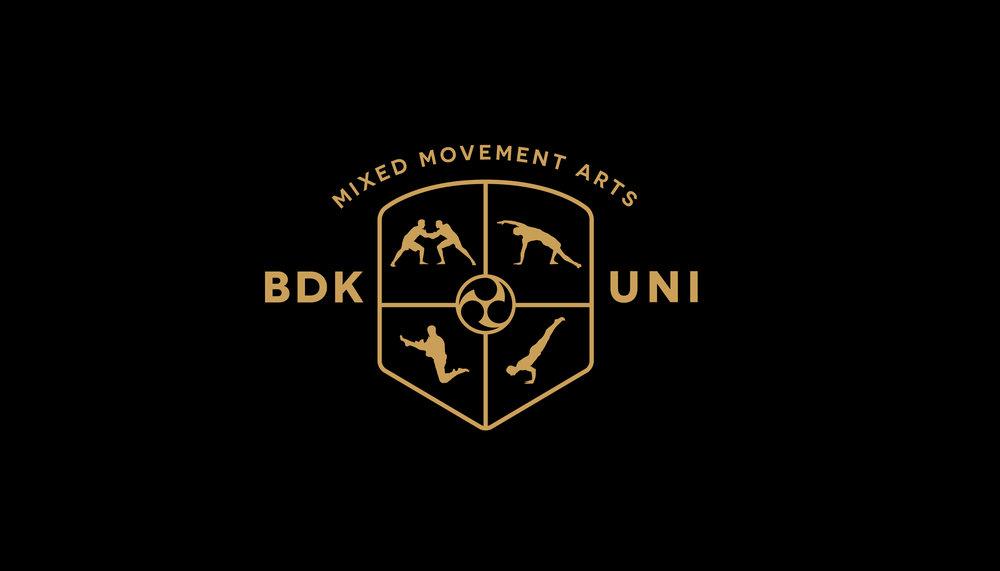 Budokon university Logo Design