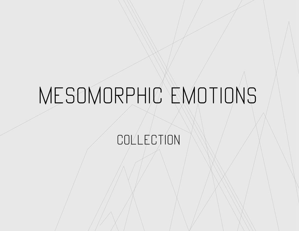 2-Mesomorphic Emotions -Line sheets-.jpg
