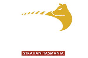 World Heritage Cruises - Experience the Gordon River
