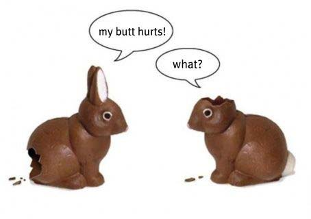rabbit-easter-picture-2018.jpg