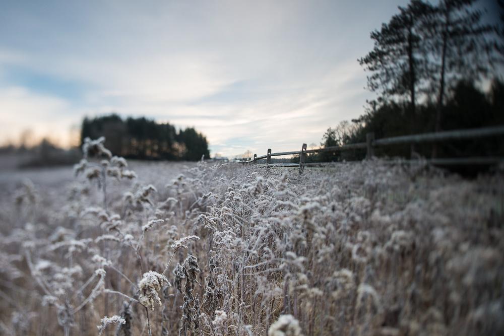 Landscapes_12.jpg