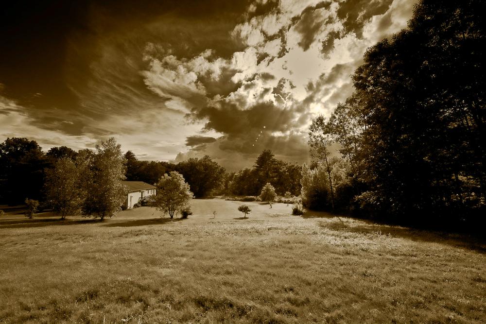 Landscapes_33.jpg