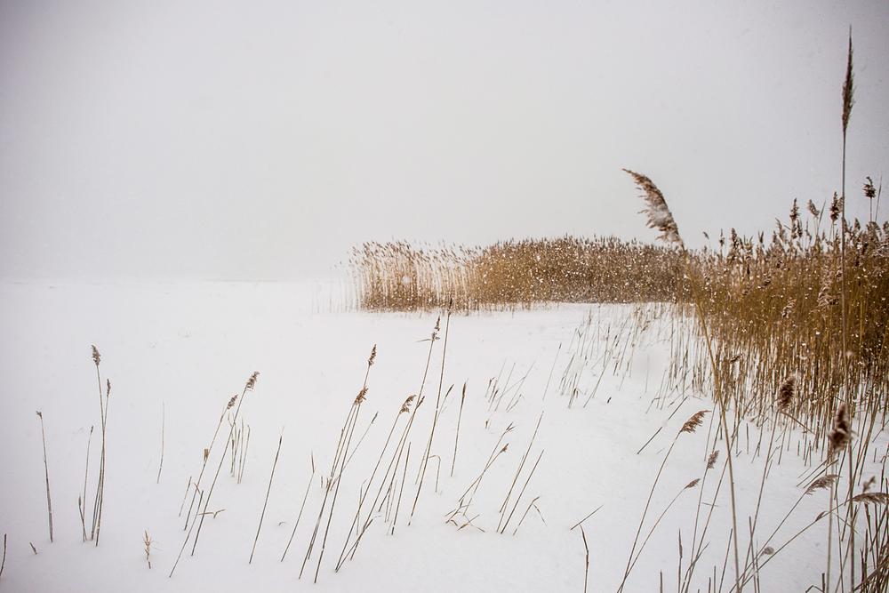 Landscapes_50.jpg