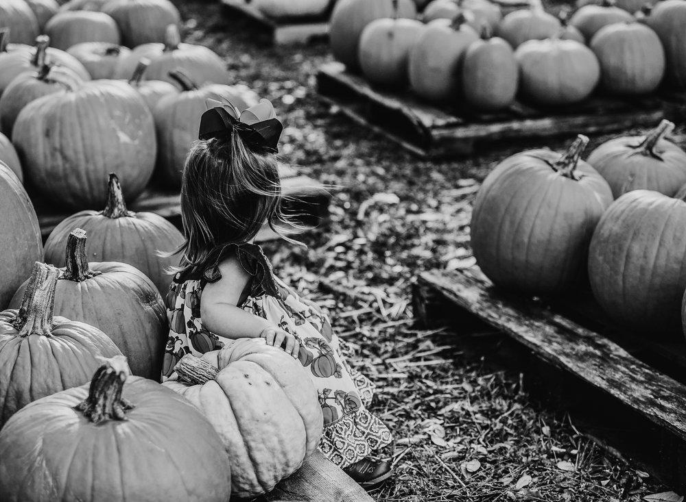 pumpkin bw-1.jpg