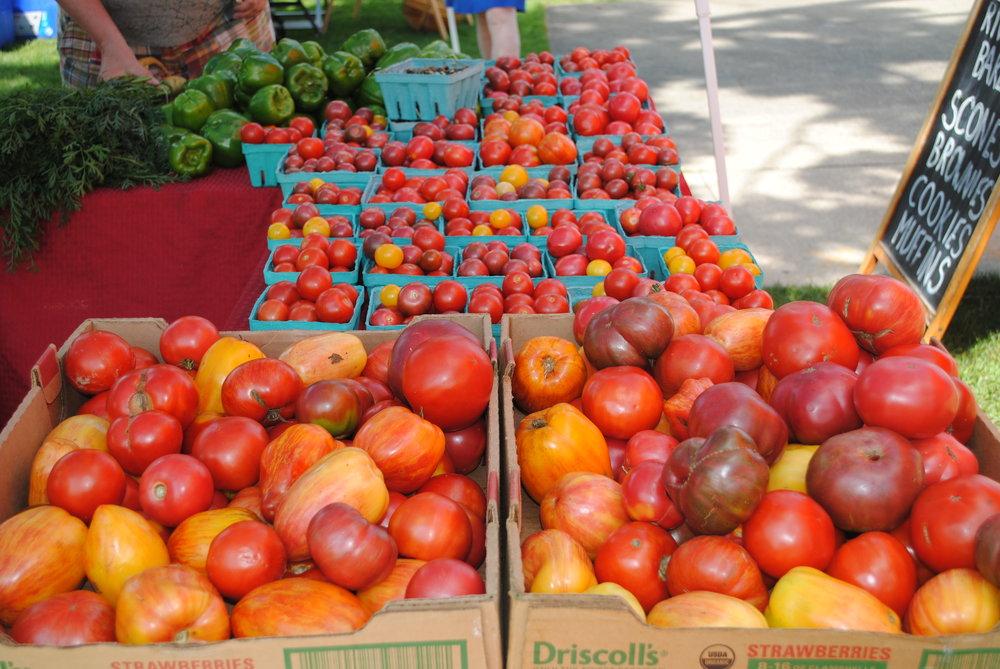 bright tomatoes.JPG